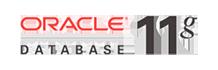 data_logo2
